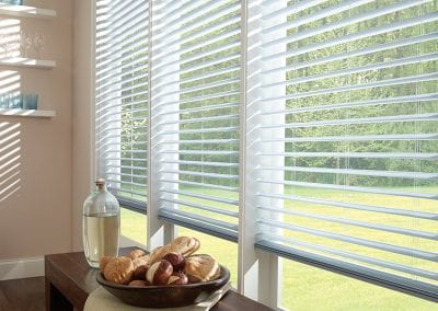 Comfortex Odysee Blinds